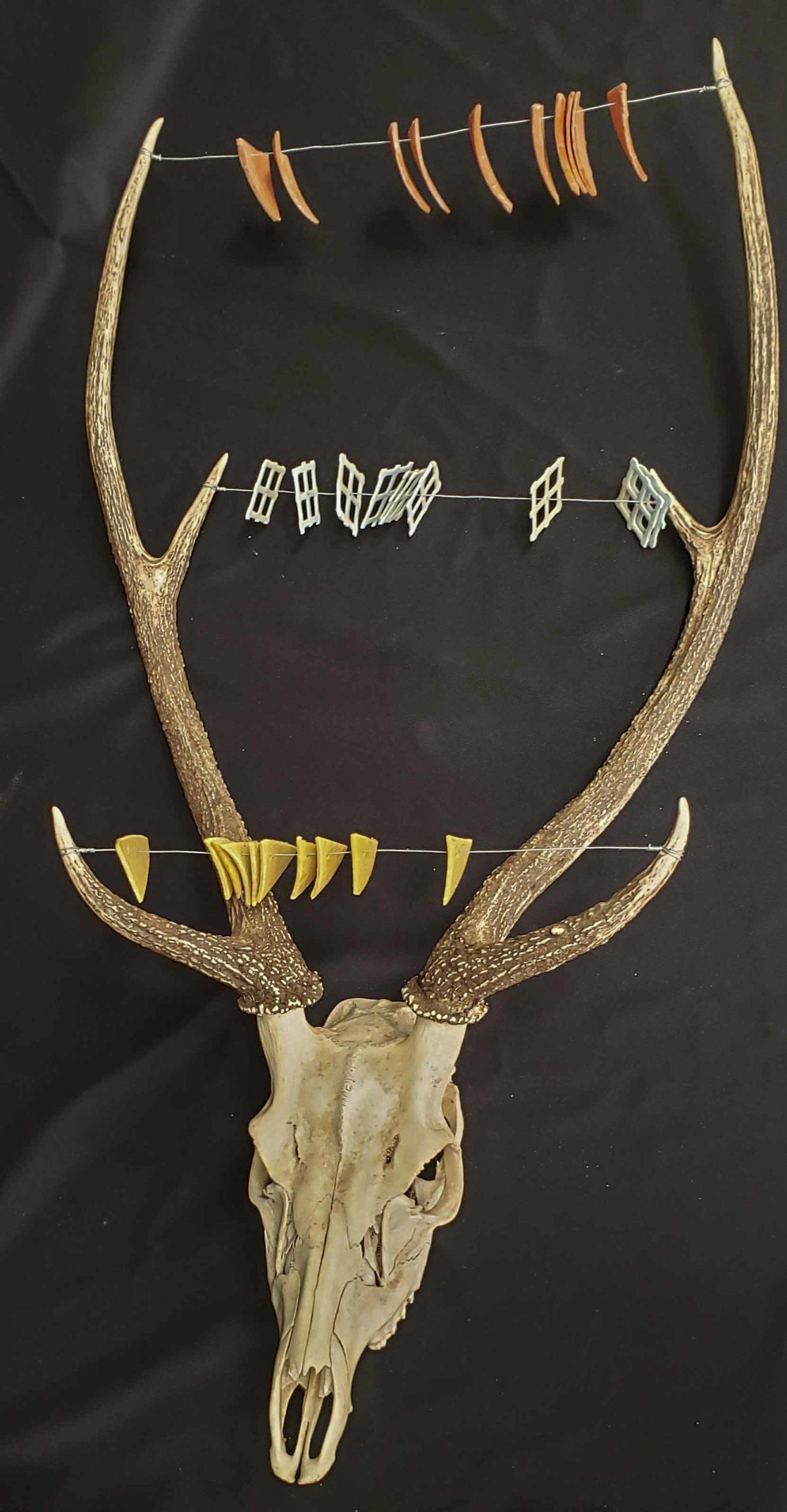Deer Trashbascus